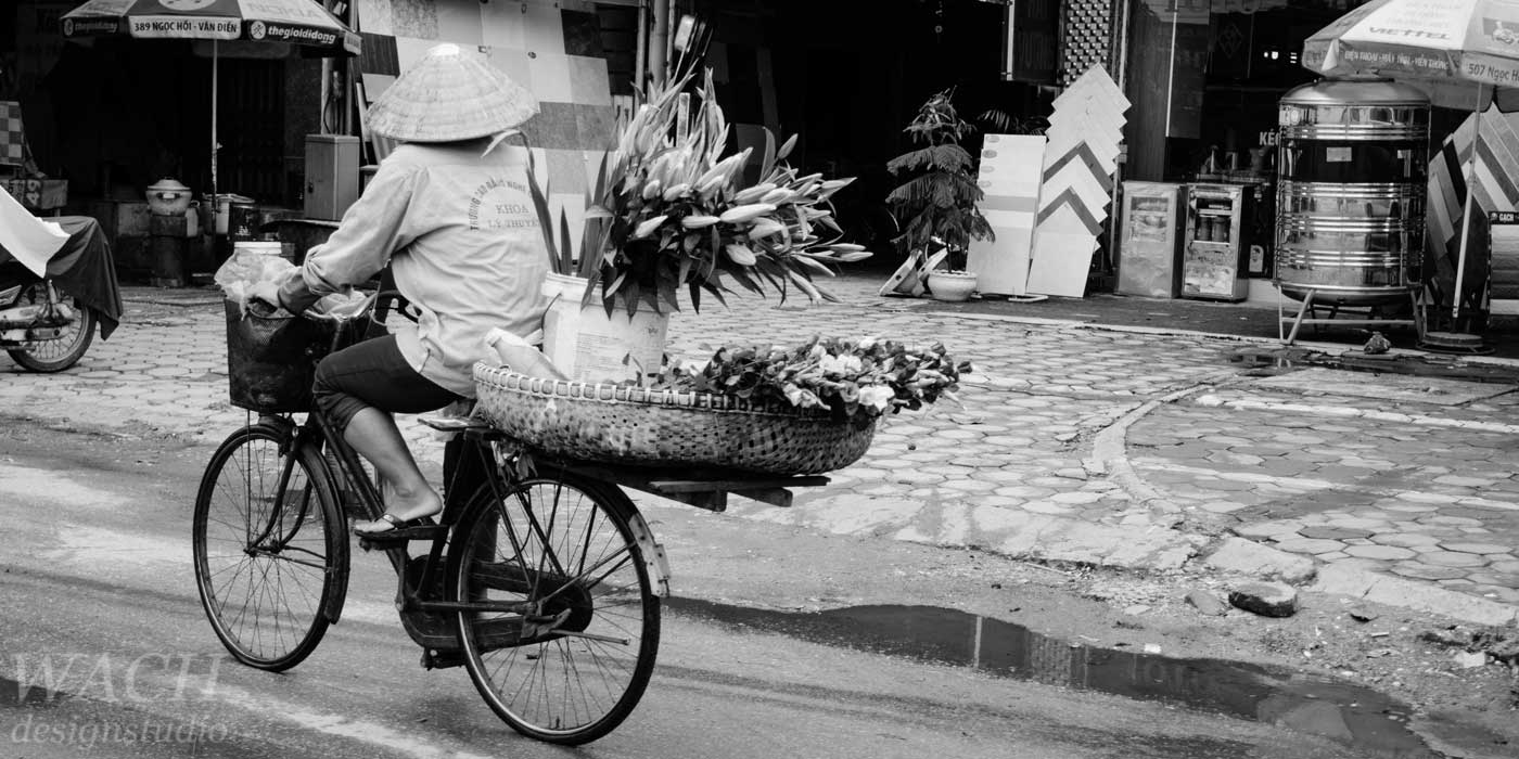 Vietnamese woman carrying a huge basket filed with flowers on the back of her bicycle through Hanoi